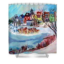 Backside Of Schenectady Stockade In February Shower Curtain