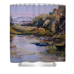 Backwater Near Sertoma Park Shower Curtain