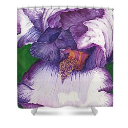 Backyard Beauty Shower Curtain