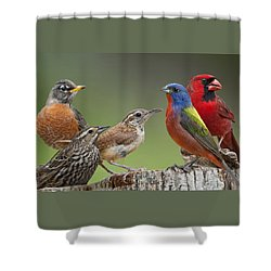 Backyard Buddies Shower Curtain