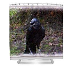 Backyard Crow Shower Curtain
