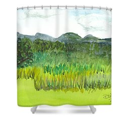 Shower Curtain featuring the painting Backyard In Barton by Donna Walsh