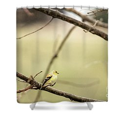 Backyard Yellow Shower Curtain