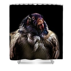 Bad Birdy Shower Curtain by Martin Newman