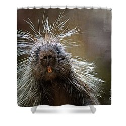 Bad Hairday Shower Curtain