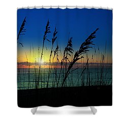 Bad Sea Oats  Shower Curtain