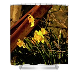 Shower Curtain featuring the photograph Bad Situation by Albert Seger