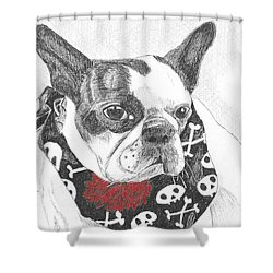 Shower Curtain featuring the drawing Bad To The Bone by Arlene Crafton