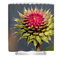 Shower Curtain featuring the photograph Bad Weeds Grow Tall by Silke Brubaker