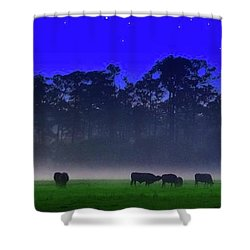 Badcows Shower Curtain