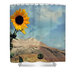 Badlands Of South Dakota Yellow Flower Shower Curtain