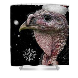 Bah Humbug Shower Curtain