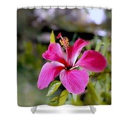 Bahamian Flower Shower Curtain