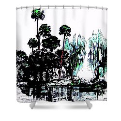 Shower Curtain featuring the painting Bahia San Lucas by Roberto Prusso