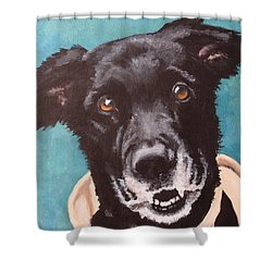 Bailey Dog Of Honor Shower Curtain