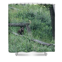 Balance Beam Shower Curtain