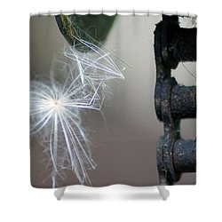 Balance, Feather And Iron Chain In The Wind Shower Curtain
