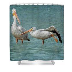 Shower Curtain featuring the photograph Balance by Kim Hojnacki