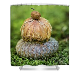Shower Curtain featuring the photograph Balance With Nature by Dale Kincaid
