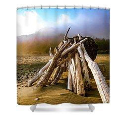 Balancing Act Beach Image Art Shower Curtain