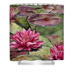 Balboa Water Lilies Shower Curtain