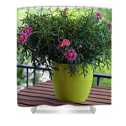 Shower Curtain featuring the photograph Balcony Flowers by Susanne Van Hulst