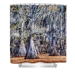 Bald Cypress In Caddo Lake Shower Curtain