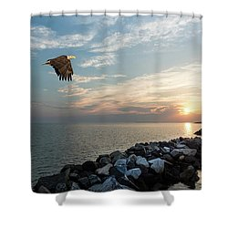 Bald Eagle Flying Over A Jetty At Sunset Shower Curtain