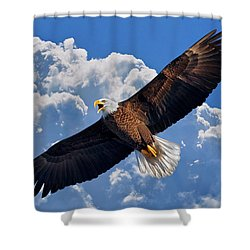 Bald Eagle In Flight Calling Out Shower Curtain by Justin Kelefas