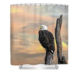 Bald Eagle Inspiration Shower Curtain