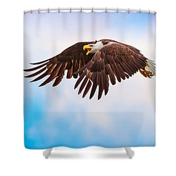 Bald Eagle  Shower Curtain by Mark Andrew Thomas
