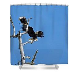 Bald Eagle Pair Shower Curtain