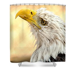 Shower Curtain featuring the photograph Bald Eagle Portrait by Yeates Photography