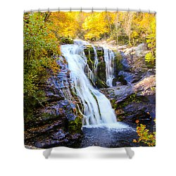 Bald River Falls II Shower Curtain