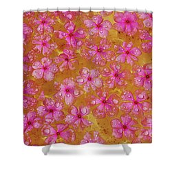 Balinese Flowers Shower Curtain by Cassandra Buckley