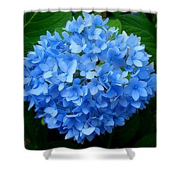 Shower Curtain featuring the photograph Ball Of Blue by Michiale Schneider