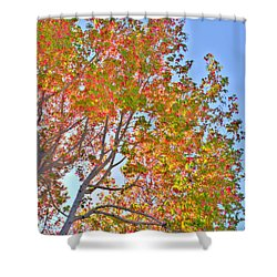 Ball To  The Wall Fall Shower Curtain