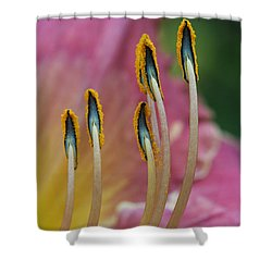 Ballerina Slippers Shower Curtain