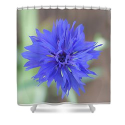 Ballerinas Shower Curtain
