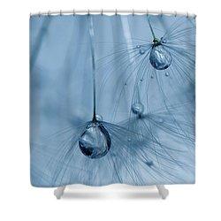 Ballerinas Shower Curtain by Rebecca Cozart