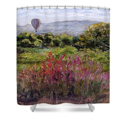 Balloon View Shower Curtain