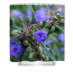 Shower Curtain featuring the photograph Balmy Blue by Michiale Schneider