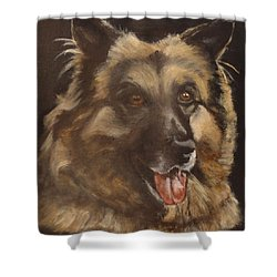 Balto Shower Curtain