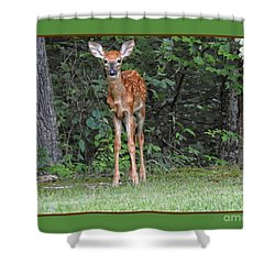 Bambi Shower Curtain by Brenda Bostic
