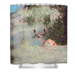 Bambi - The Early Years Shower Curtain