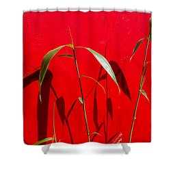 Bamboo Against Red Wall Shower Curtain