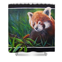 Shower Curtain featuring the painting Bamboo Basking--red Panda by Mary McCullah