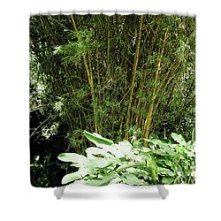 F8 Bamboo Shower Curtain by Donald k Hall