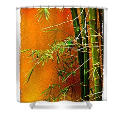 Bamboo Shower Curtain by Linda Olsen