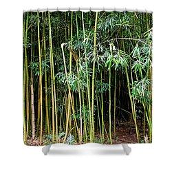 Bamboo Wind Chimes  Waimoku Falls Trail  Hana  Maui Hawaii Shower Curtain by Michael Bessler
